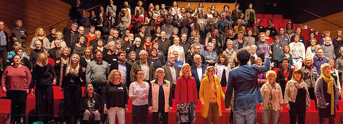 Stichting Maestro Babant luidkeels